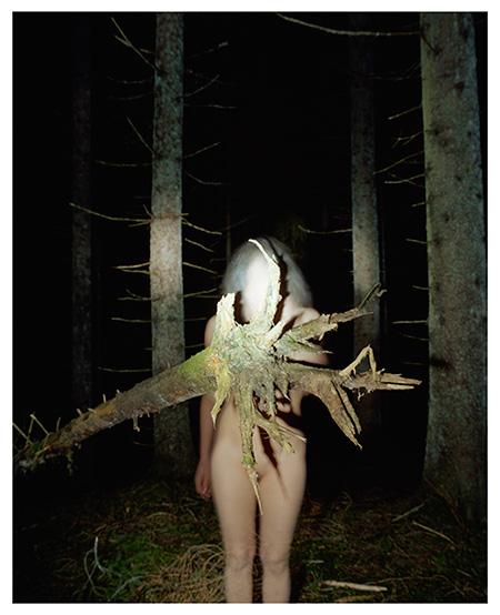 Margot Wallard